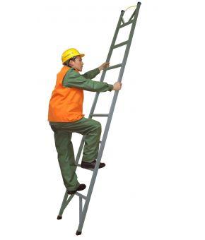 Лестница стеклопластиковая приставная одноколенная ЛСПО-3,0-2-ТНИ