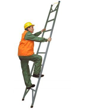 Лестница стеклопластиковая приставная одноколенная ЛСПО-2,5-2-ТНИ