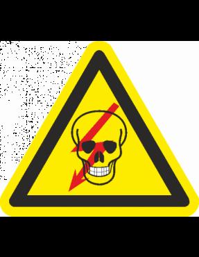 "Наклейка ""Обережно! Електрична напруга."" (череп) 300 мм"